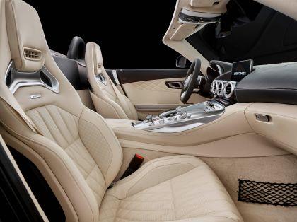 2017 Mercedes-AMG GT C roadster 22