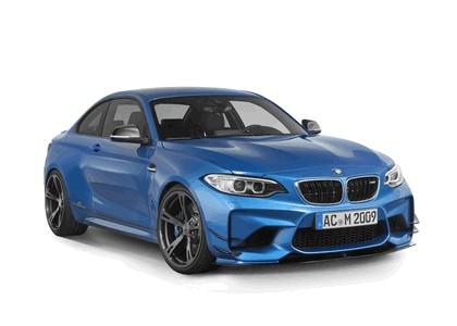 2016 BMW M2 by AC Schnitzer 14