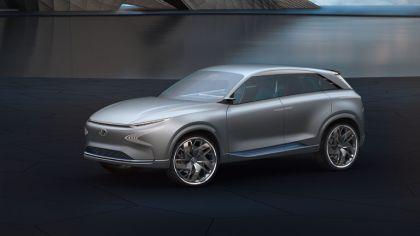 2017 Hyundai FE Fuel Cell concept 6