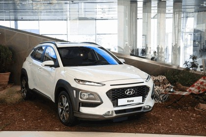 2017 Hyundai Kona 41