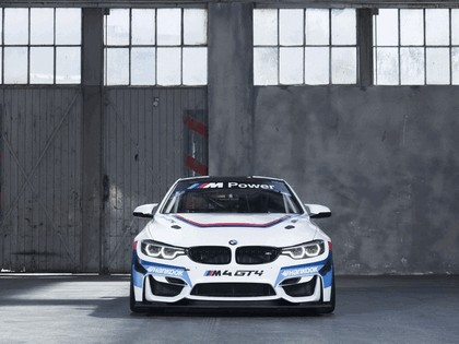 2017 BMW M4 GT4 3