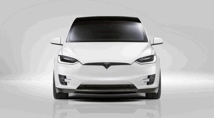 2017 Novitec TX E ( based on Tesla Model X ) 7