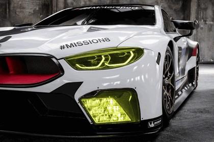 2017 BMW M8 GTE 10