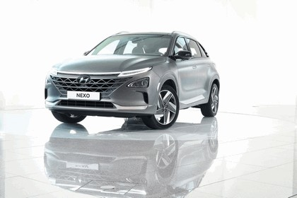 2018 Hyundai Nexo 65