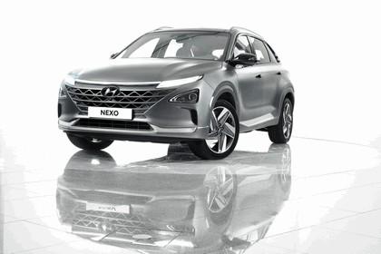 2018 Hyundai Nexo 66