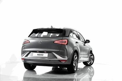 2018 Hyundai Nexo 68