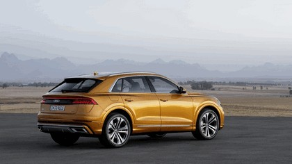 2018 Audi Q8 6