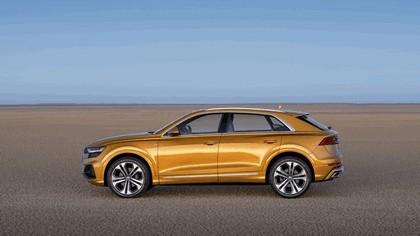 2018 Audi Q8 14