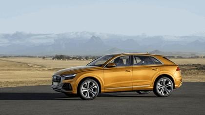 2018 Audi Q8 16