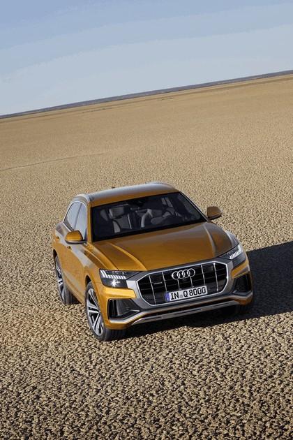 2018 Audi Q8 19