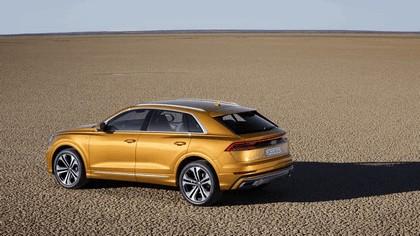 2018 Audi Q8 21