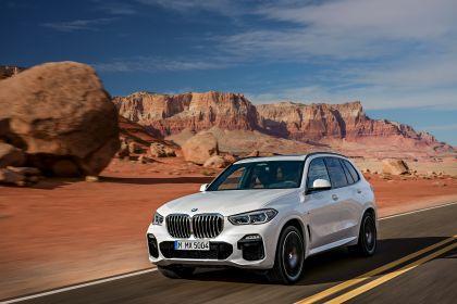 2019 BMW X5 ( G05 ) xDrive 30d 1