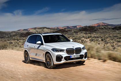 2019 BMW X5 ( G05 ) xDrive 30d 13