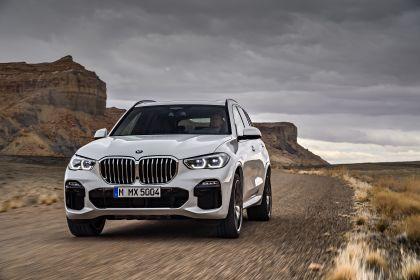 2019 BMW X5 ( G05 ) xDrive 30d 16