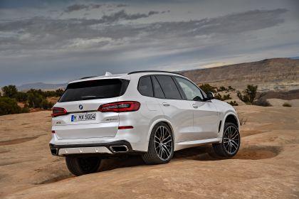 2019 BMW X5 ( G05 ) xDrive 30d 19