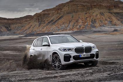 2019 BMW X5 ( G05 ) xDrive 30d 21