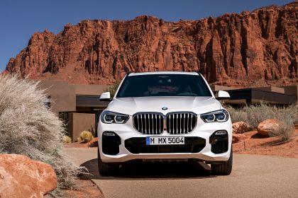 2019 BMW X5 ( G05 ) xDrive 30d 26