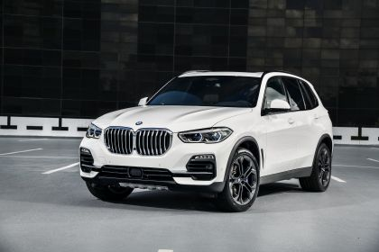 2019 BMW X5 ( G05 ) xDrive 30d 79