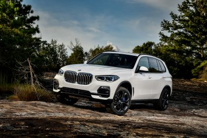 2019 BMW X5 ( G05 ) xDrive 30d 141