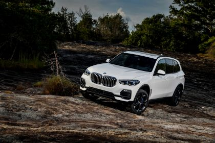 2019 BMW X5 ( G05 ) xDrive 30d 142