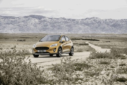 2018 Ford Fiesta Active 22