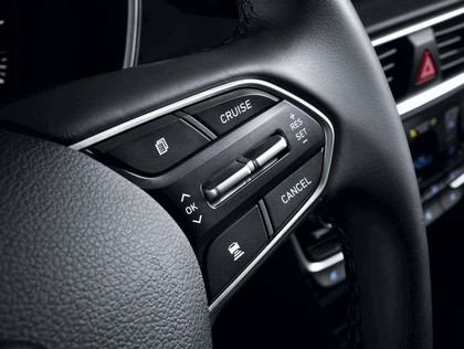 2019 Hyundai Santa Fe 109