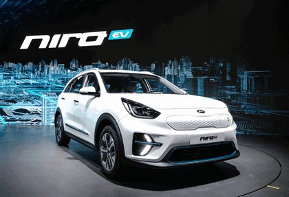 2018 Hyundai Niro EV 6