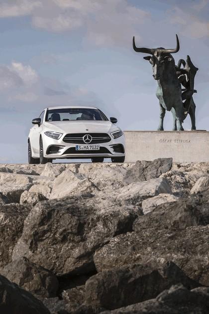 2018 Mercedes-AMG CLS 53 11