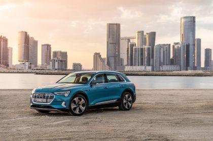 2019 Audi e-Tron 13