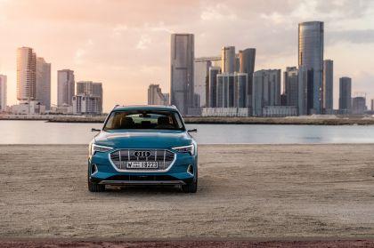 2019 Audi e-Tron 17