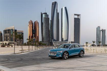 2019 Audi e-Tron 22