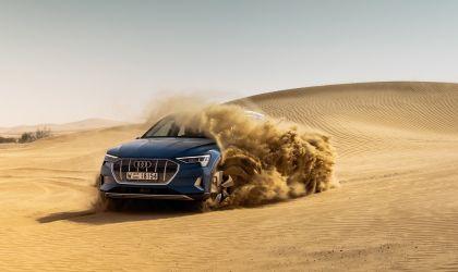 2019 Audi e-Tron 28