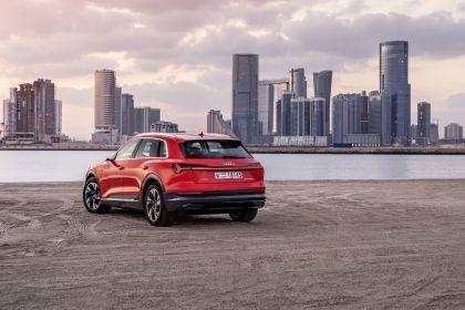 2019 Audi e-Tron 132