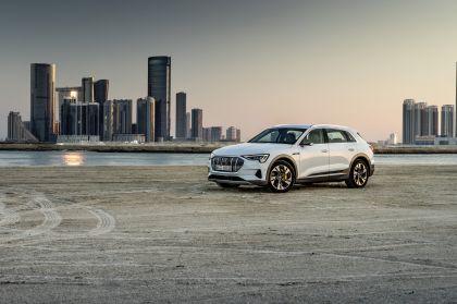 2019 Audi e-Tron 196