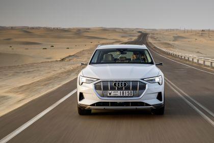 2019 Audi e-Tron 231