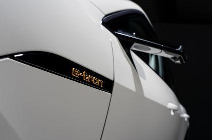 2019 Audi e-Tron 239