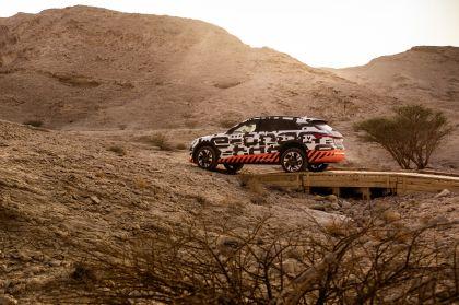2019 Audi e-Tron 252
