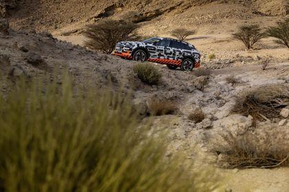 2019 Audi e-Tron 253