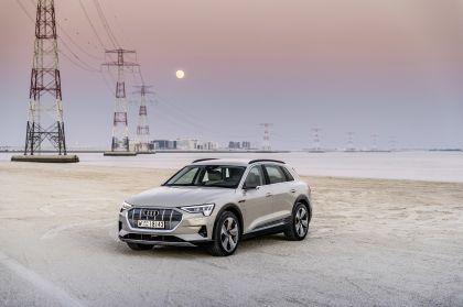2019 Audi e-Tron 264