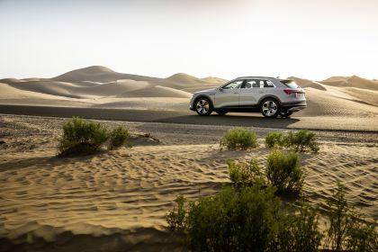 2019 Audi e-Tron 281