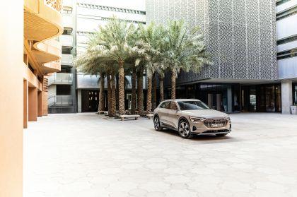2019 Audi e-Tron 289