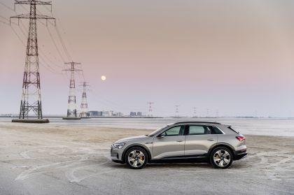 2019 Audi e-Tron 291