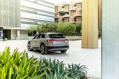 2019 Audi e-Tron 293