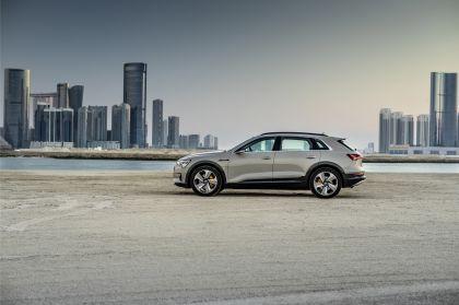 2019 Audi e-Tron 298