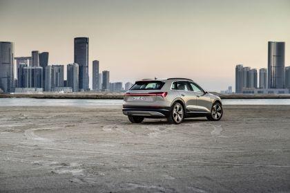 2019 Audi e-Tron 300