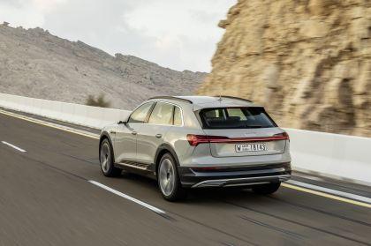 2019 Audi e-Tron 313