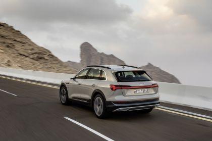 2019 Audi e-Tron 315