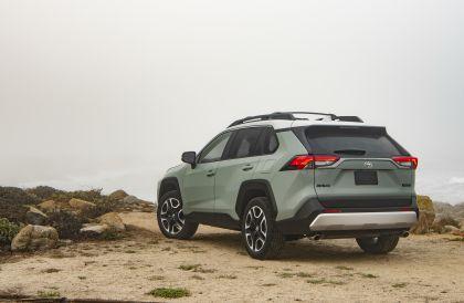 2019 Toyota RAV4 Adventure - Lunar rock 4