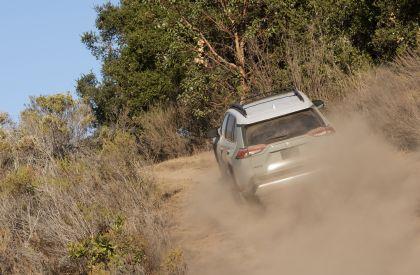 2019 Toyota RAV4 Adventure - Lunar rock 18