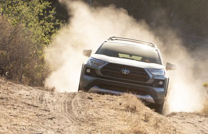 2019 Toyota RAV4 Adventure - Lunar rock 19